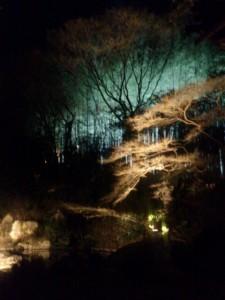 京都 花灯路