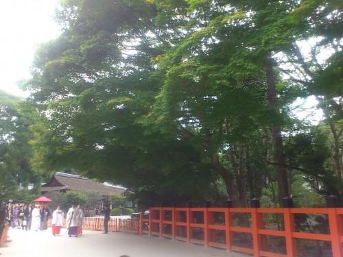 上賀茂神社 結婚式