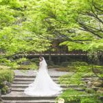 /home/users/0/kilo.jp topwedding/web/blog/wp content/uploads/wedding 180731 s 0077