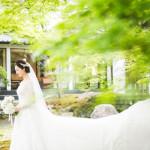 /home/users/0/kilo.jp topwedding/web/blog/wp content/uploads/wedding 180811 s 0104